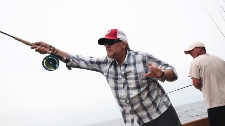 White Marlin on a Fly