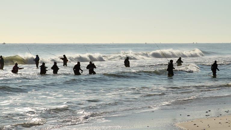 Season of the Surf