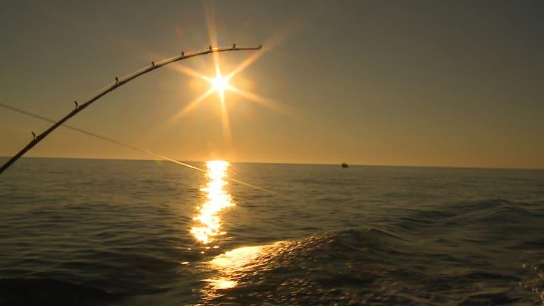 Anglers Journal TV