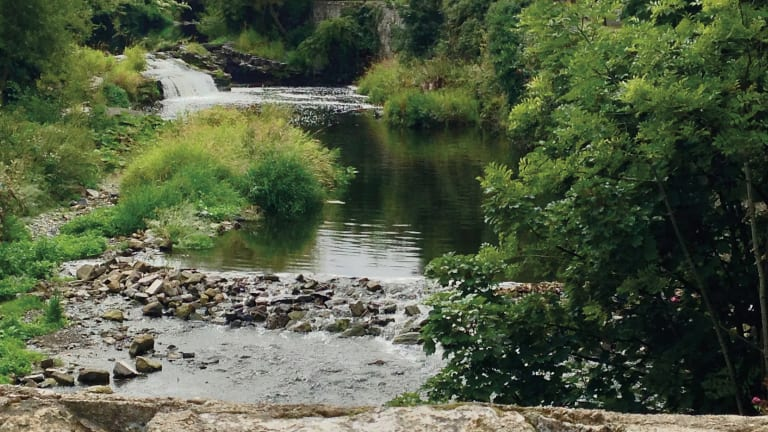 The Ways of the River Dodder