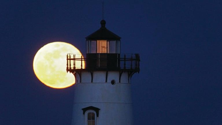 Striper Moon