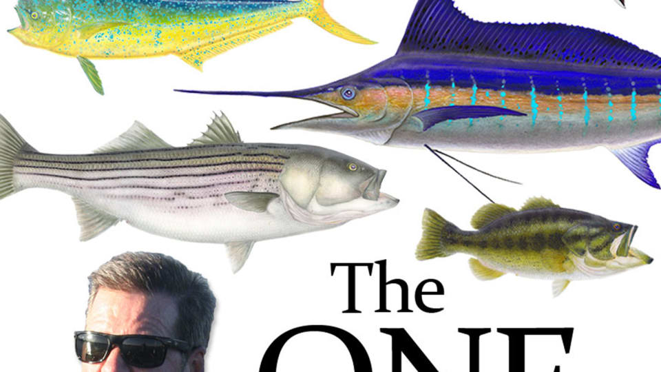 The One - Episode 1