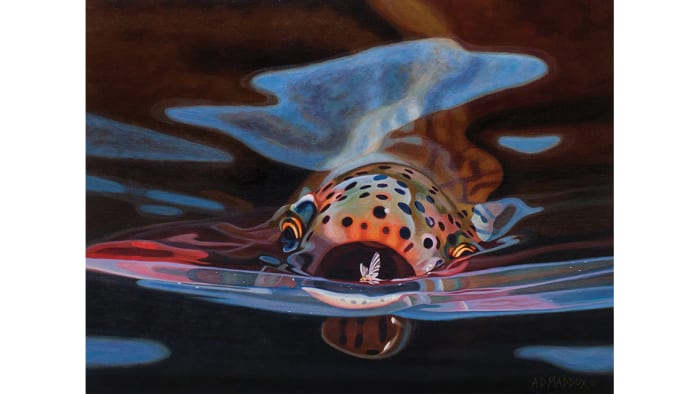 M Letter In Water Trout paintings of A.D...