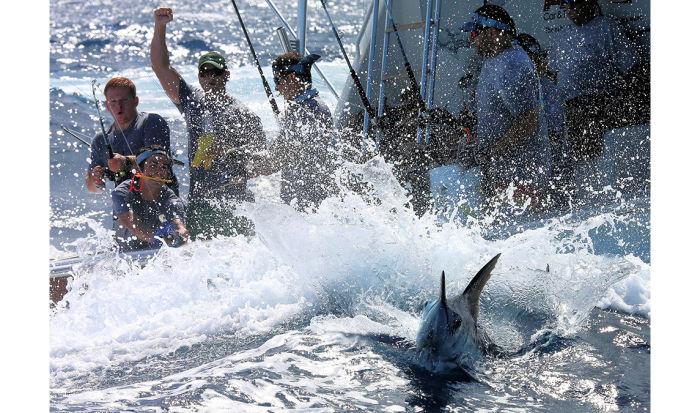 Things can happen fast with a big fish near the boat. The best crews have the drill down cold.