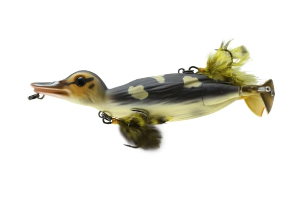 Best New Products from ICAST