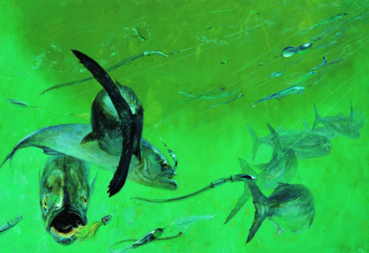 Bluefish feeding beneath a headboat by Stanley Meltzoff.
