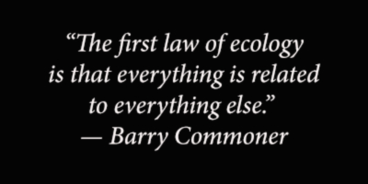 """The first law of ecology is that everything is related to everything else."" — Barry Commoner"