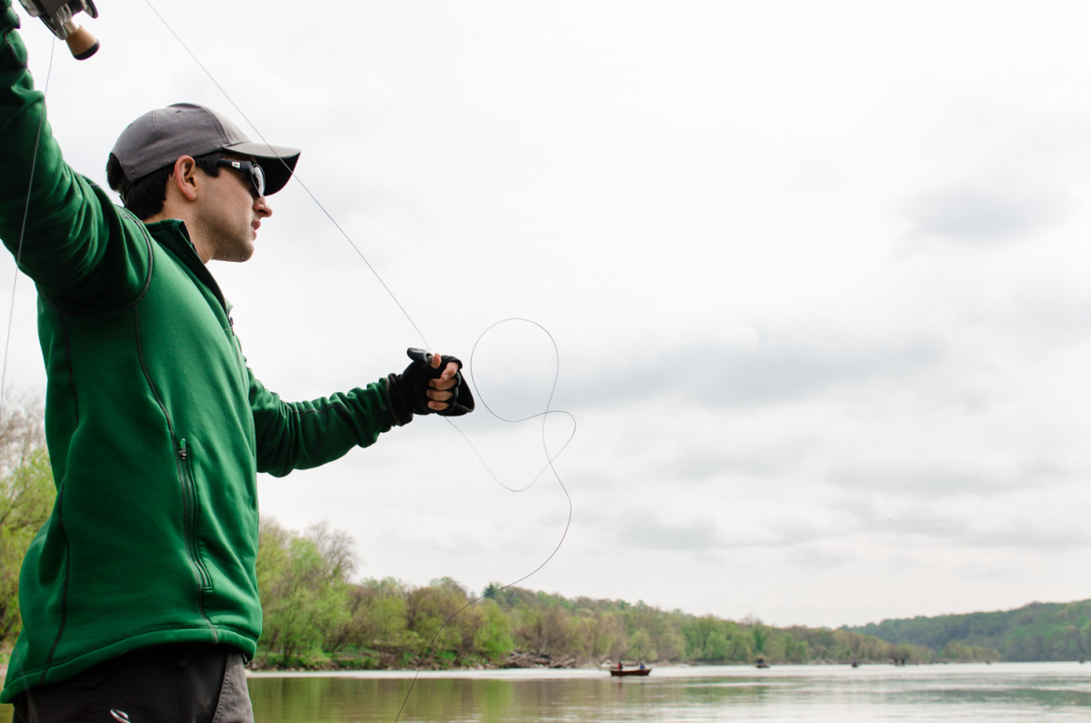 Nick Swingle casts to Potomac River shad as spring takes hold.