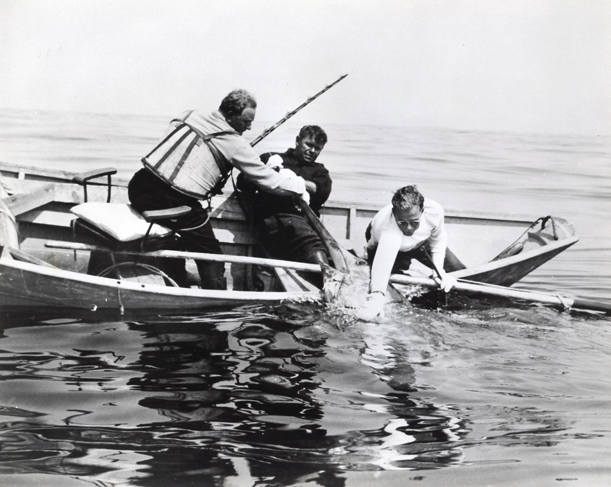 Legondary charter skipper Tommy Gifford (center) swordfishing off nantucket, Mass., in 1936 with Michael Lerner (left) and mate Larry Bagby.