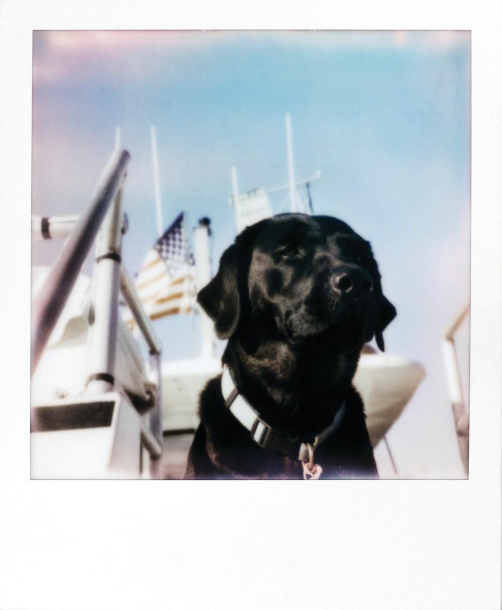 SGD_AJ_Polaroid_10