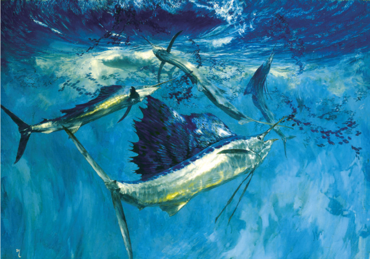 Five Leaping Sailfish