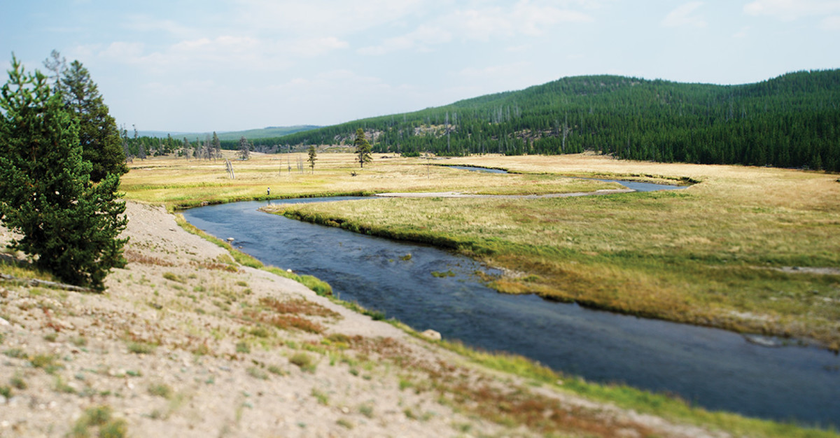 The Gibbon meanders toward the Firehole, where the two rivers join and become the Madison
