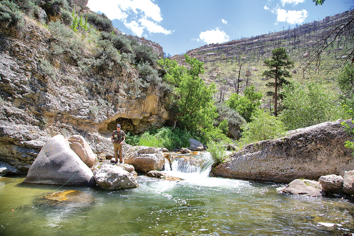The author works a pretty little section of the Middle Fork of the Powder River, a vibrant emerald vein running through dry country.