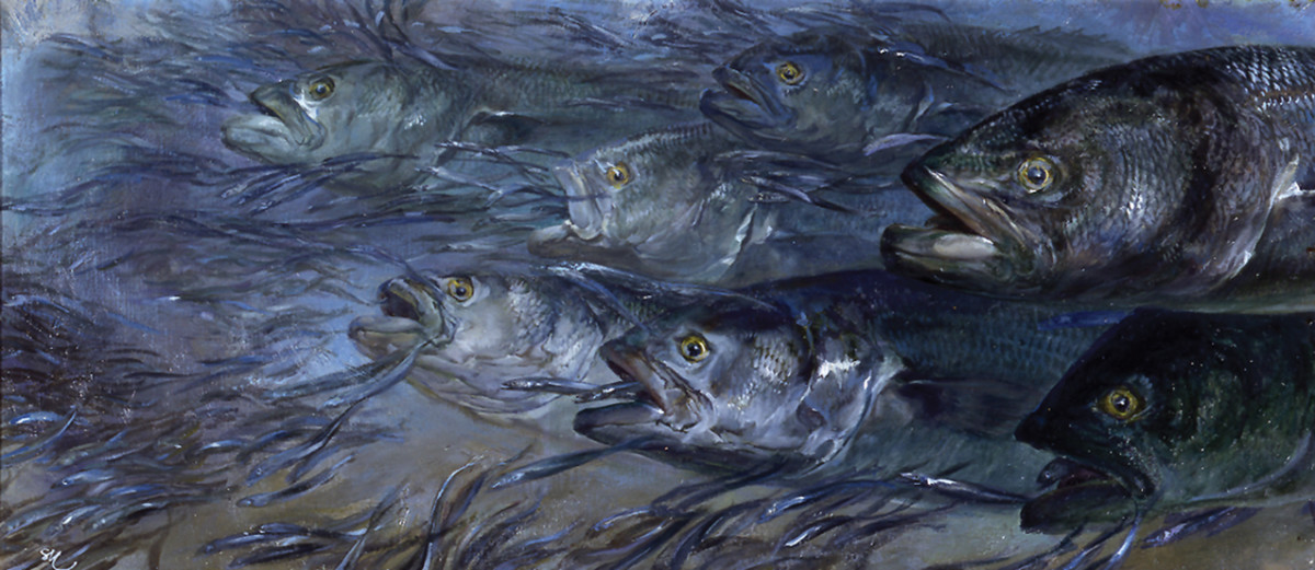 Blues and Sand Eels in the Surf by painter Stanley Meltzoff captures a wild feeding frenzy in the shallows.