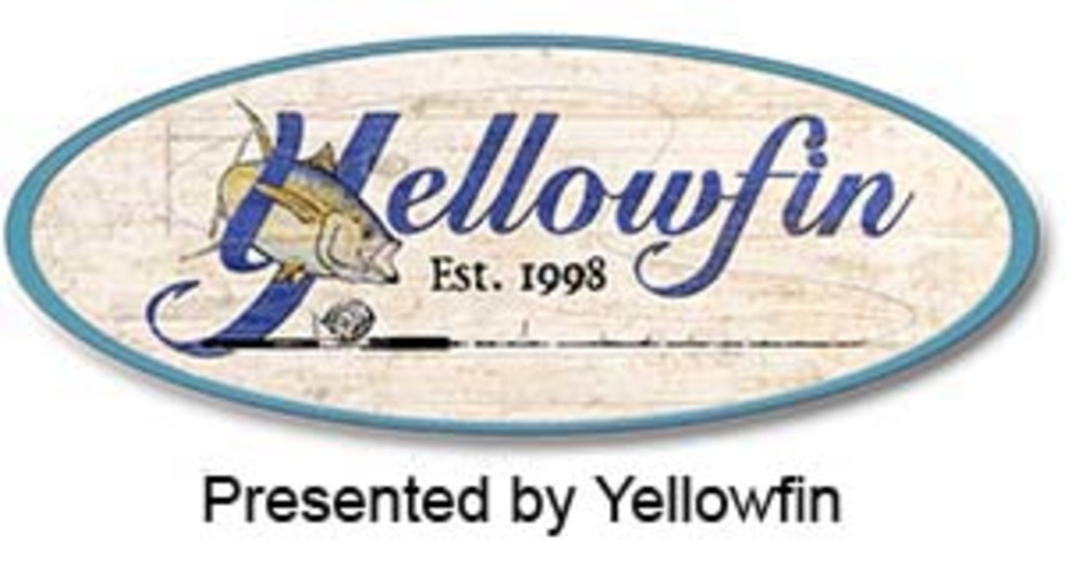 logo-sponsor-yellowfin