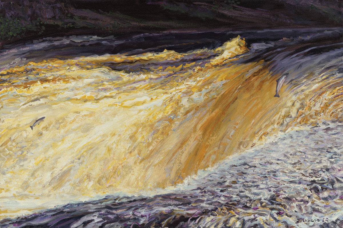 Salmon Ascending a Falls