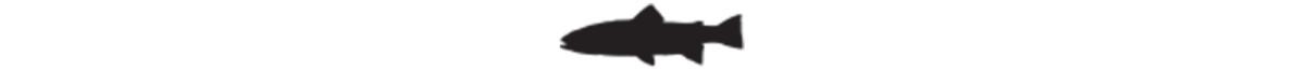 aj-fish-rule-2000x110