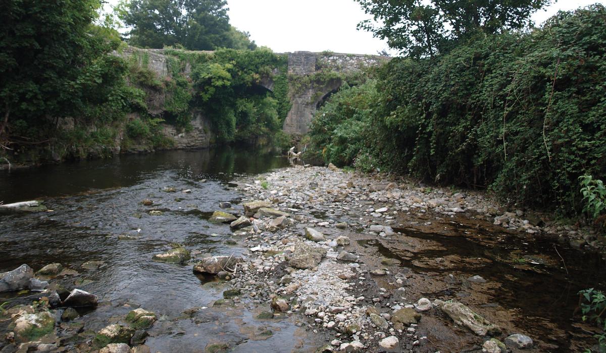 The River Dodder