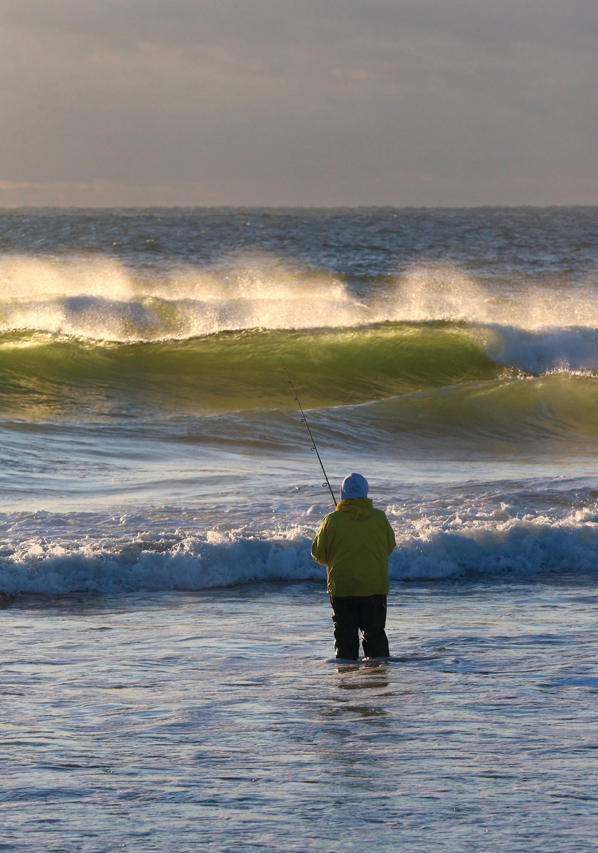 A surf caster works the translucent golden-green breakers of fall.