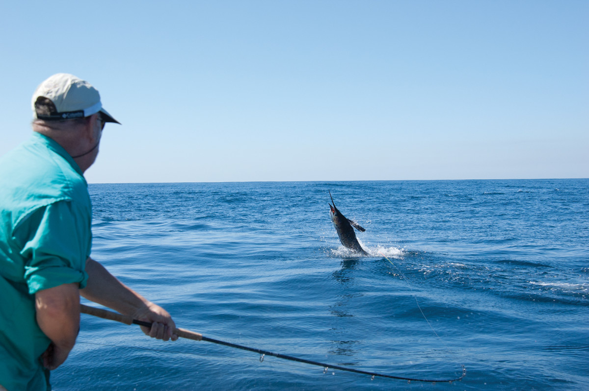 Jordan honed his technique and tested his tackle on thousands of Pacific sailfish.