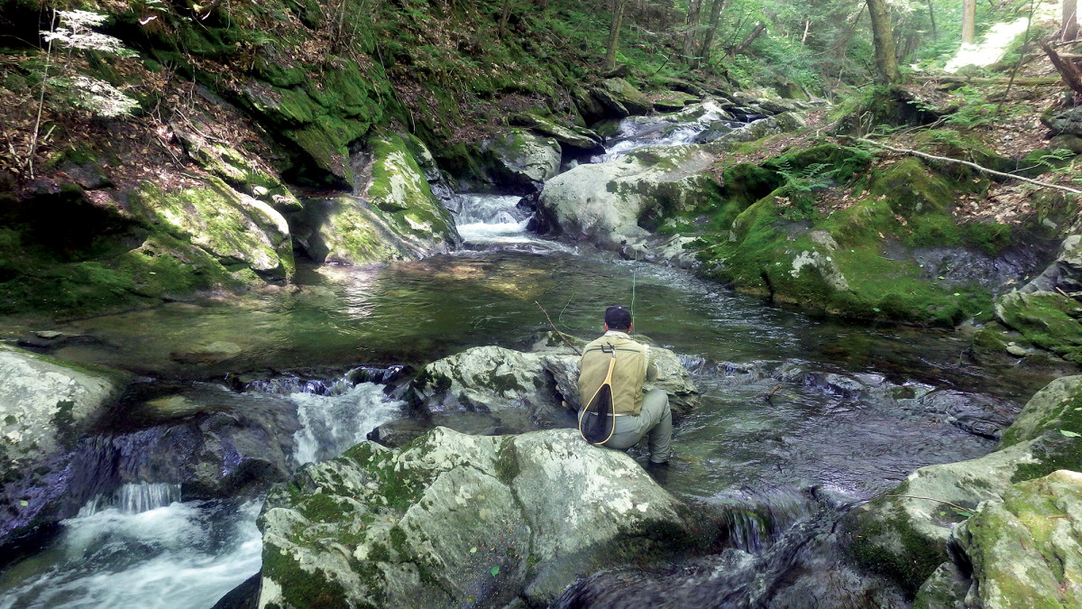 The elder poet/fisherman probes the cool water flowing through an artery of boulders.
