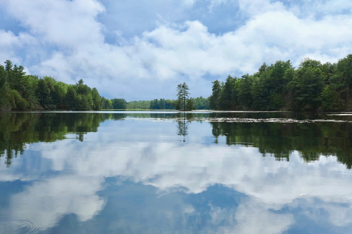 Newboro Lake has a pristine, quiet beauty about it.
