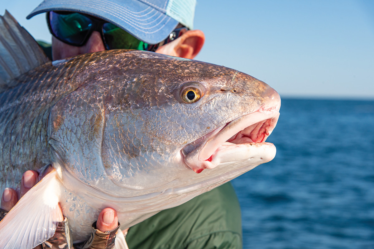 """Horsley, who is plenty """"fishy,"""" with a friend he caught off Cape Lookout. Hugh Davis photo"""