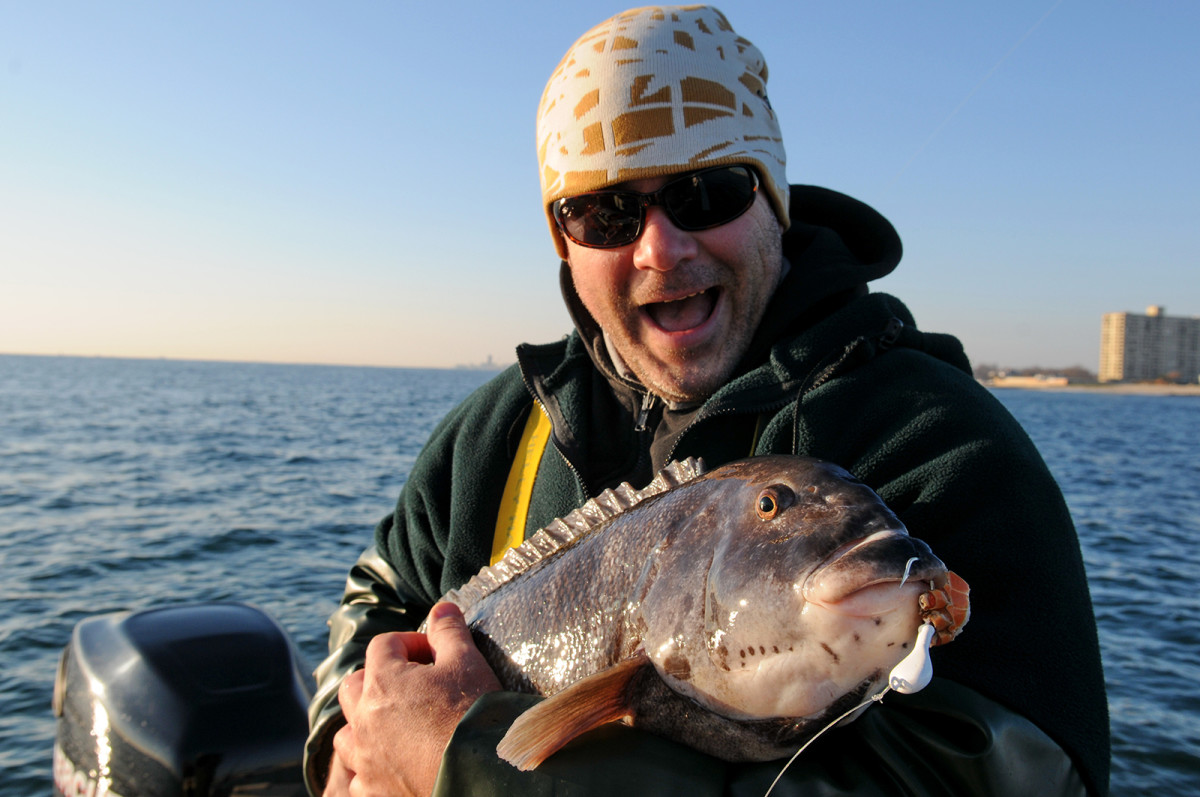 Tog are not the prettiest fish in the ocean but their diehard fans love them anyway.