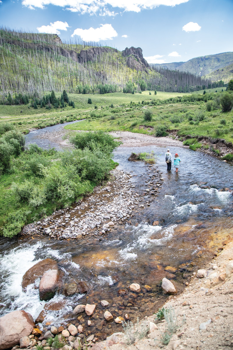 Teacher and student fish a Colorado stream flanked by regenerating forest.