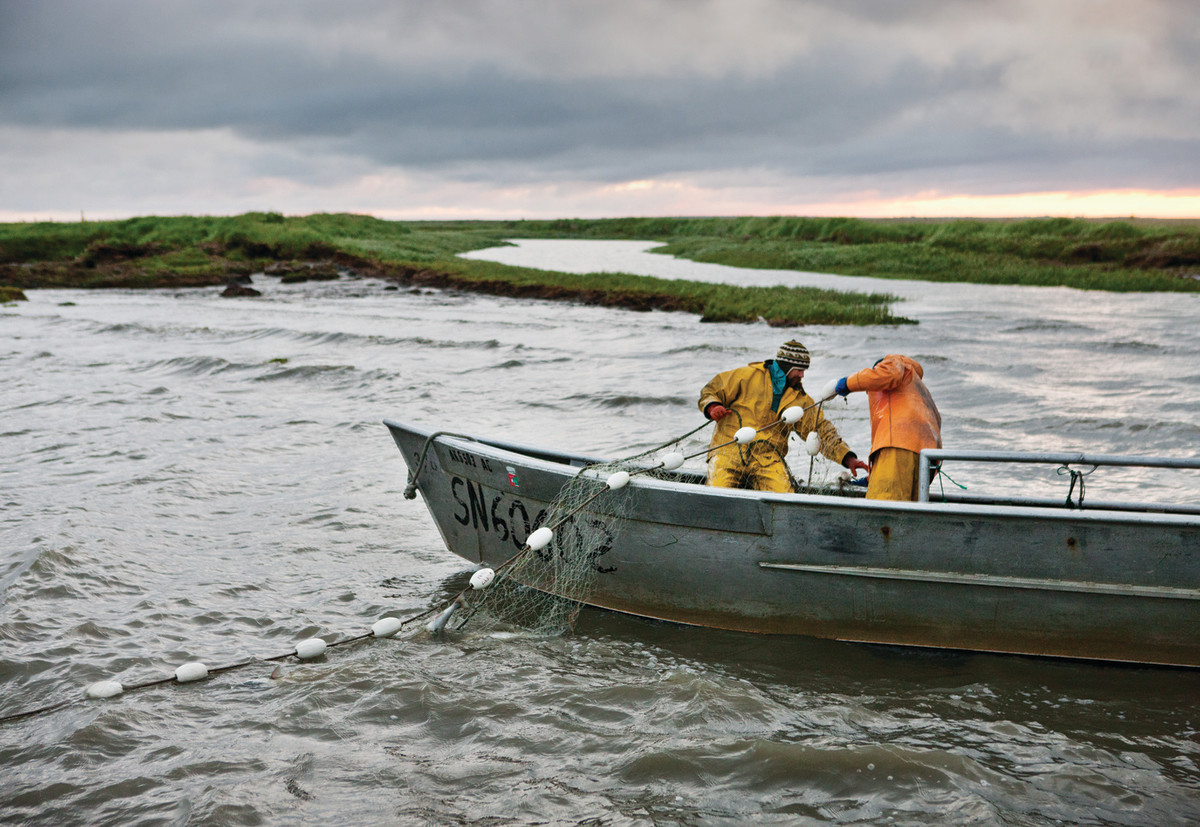 Commercial fishermen wrestle with a gill net in Bristol Bay.