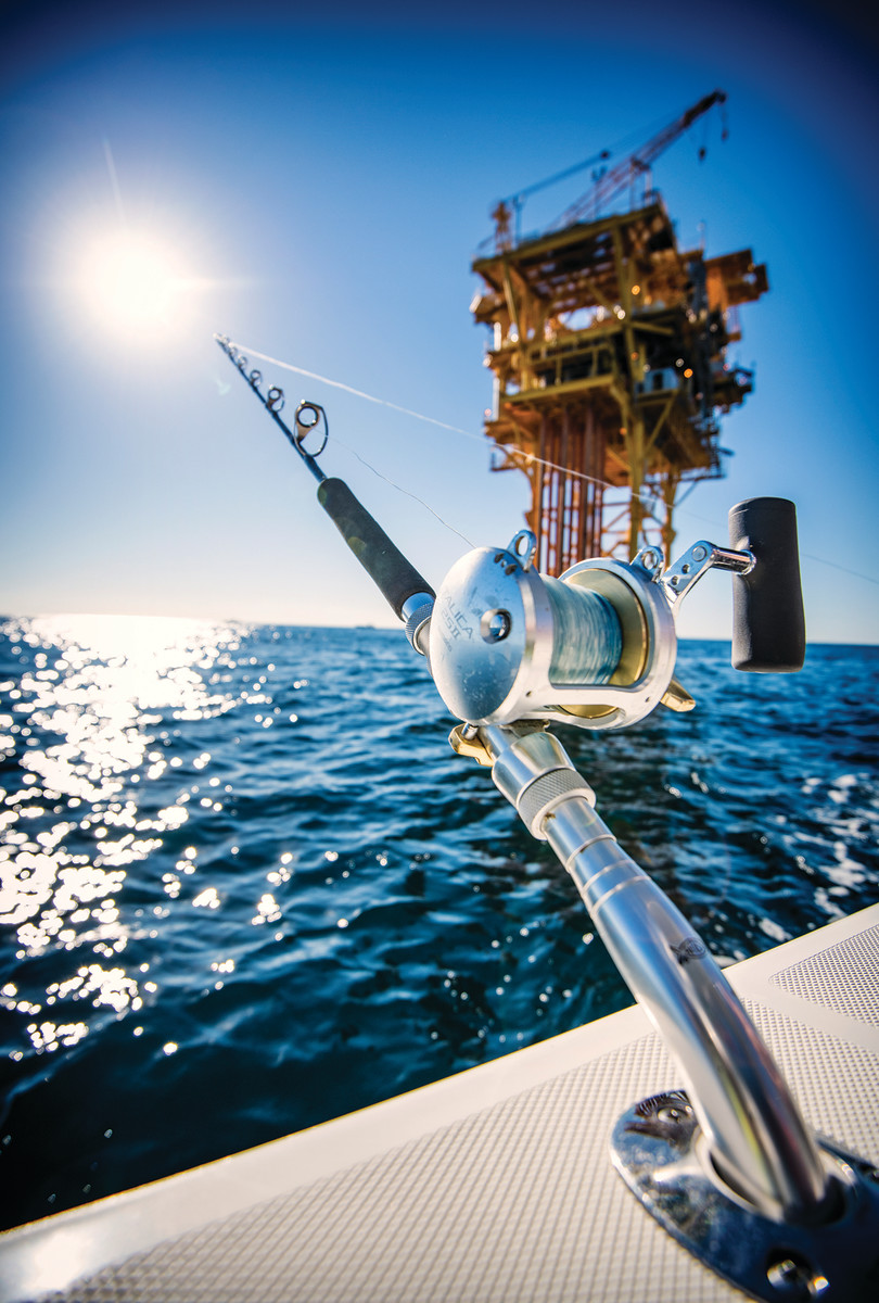 Offshore oil rigs provide habitat for a wide variety of gamefish.